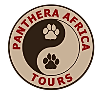 Logo final Panthera Africa.png
