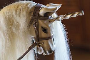 Unicorn - Platinum Edition