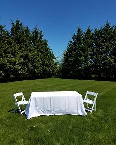 Table & Linen & Chairs VERTICAL.jpg
