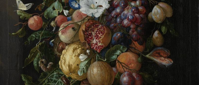 Festoen van vruchten en bloemen, Jan Davidsz, De Heem