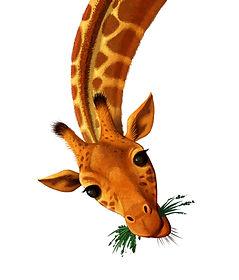 Giraffe-Head.jpg