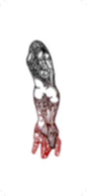 02_arm_red_SMALL.jpg