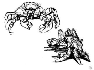 20180828_morningguts_crabs02.jpg