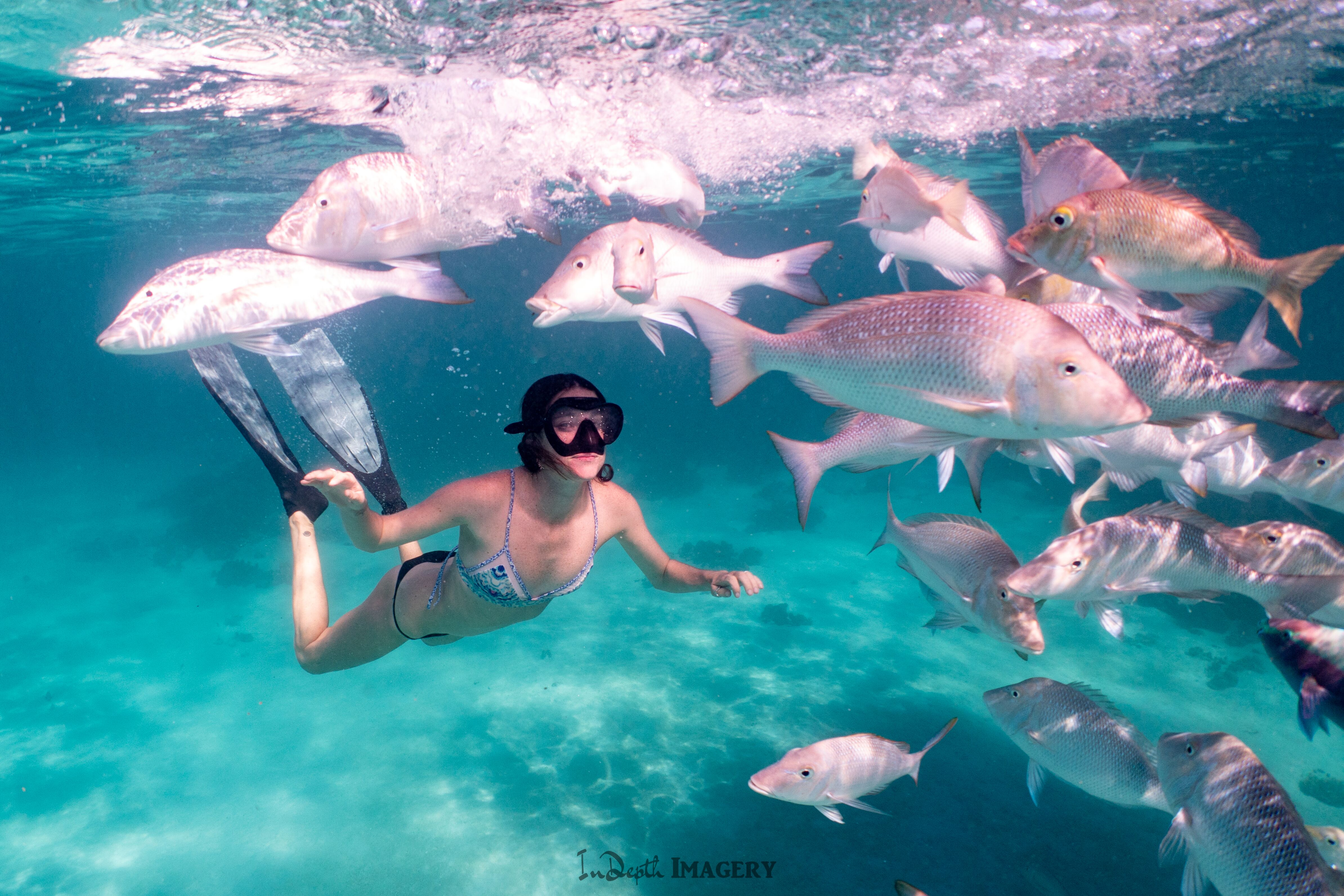 Guest swimming with spango fish
