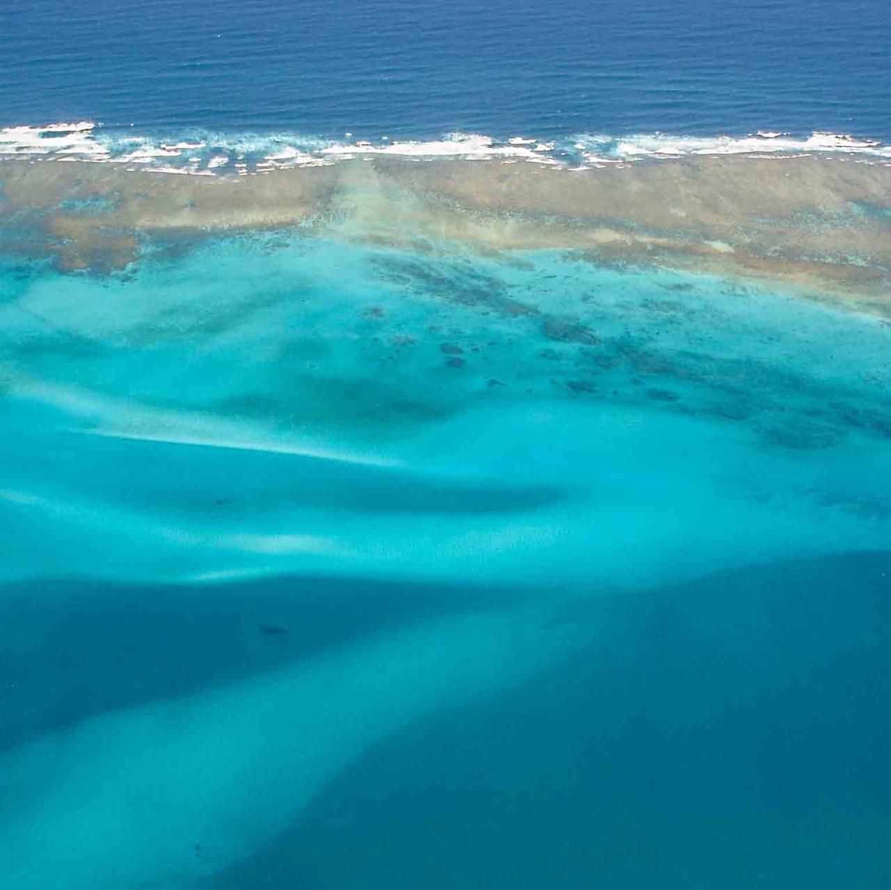 Ningaloo Reef CB
