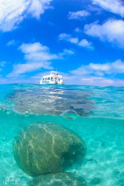 Manta Boat of Coral Bay Ecotours