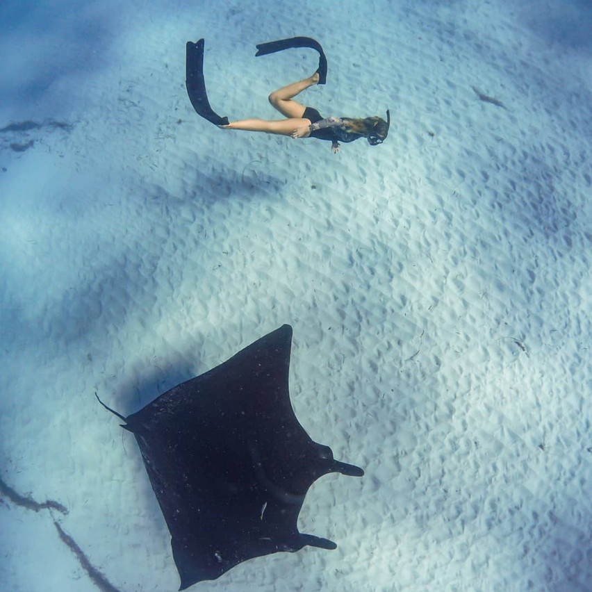 guide with manta