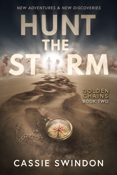 Hunt the Storm 6x9 - &.jpg