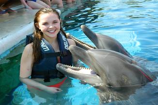swim with dolphins.jpg