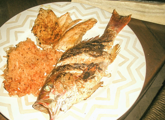 Whole Pacific Red Snapper