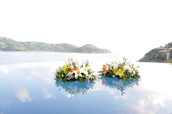 flowers floating in pool zihuatanejo mexico