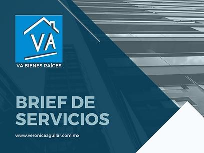 BRIEF SERVICIOS.png