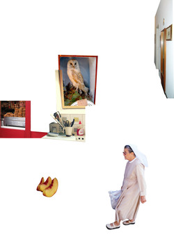 8. collage