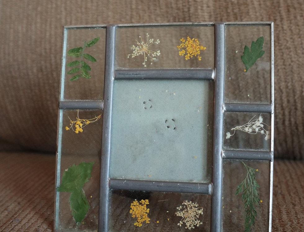 Small Dried Botanical Frame