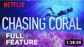 Oceans are Dying