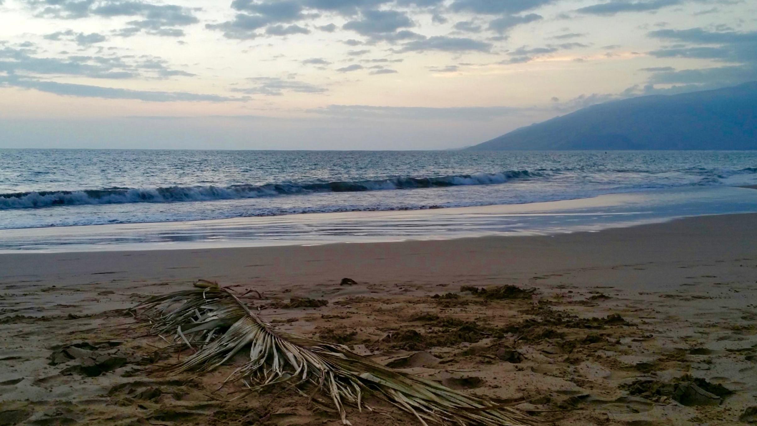 Kama'ole Beach 1