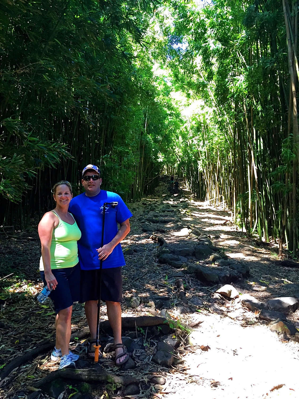 Hike to Waimoku Falls 5