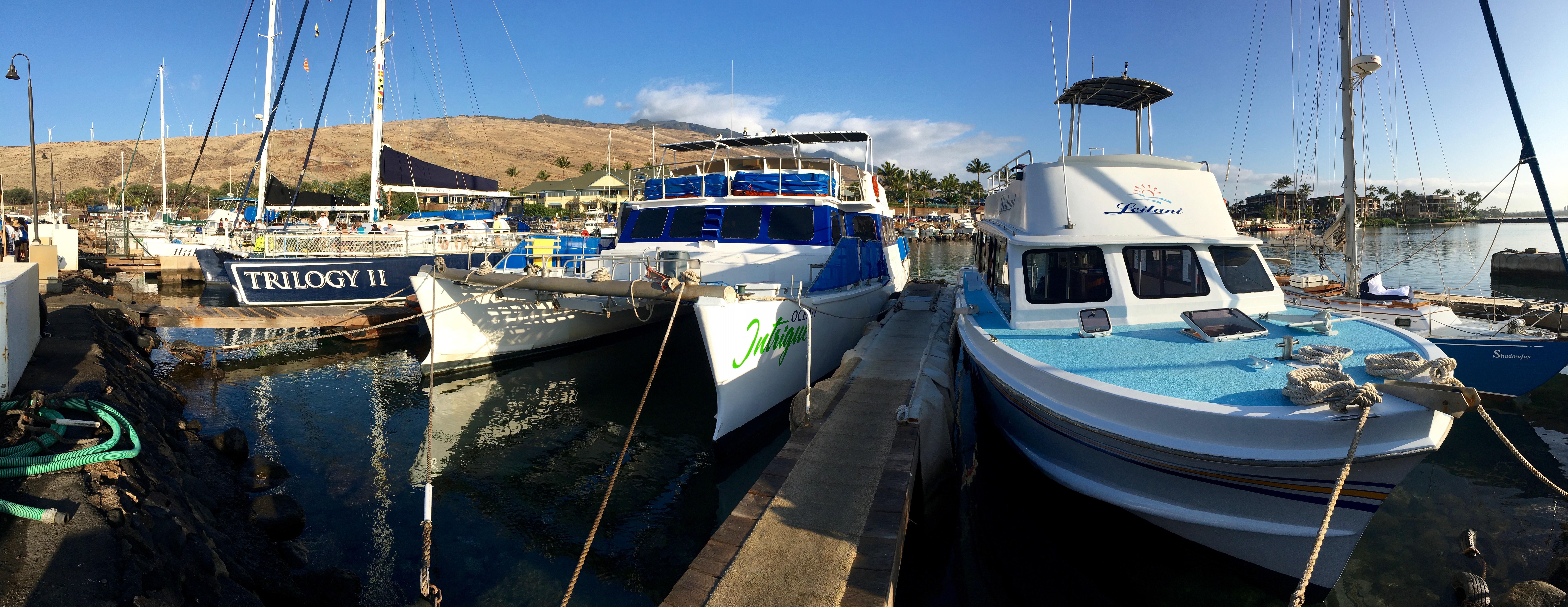 Ma'alea Harbor
