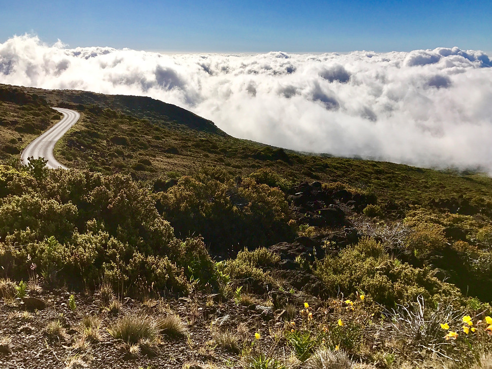 Here's where the road extends above the clouds.