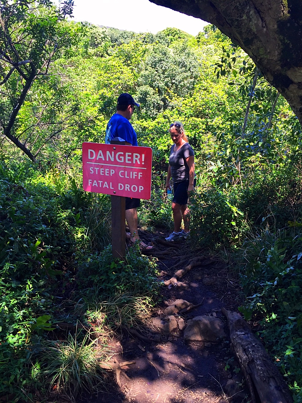 Hike to Waimoku Falls 3