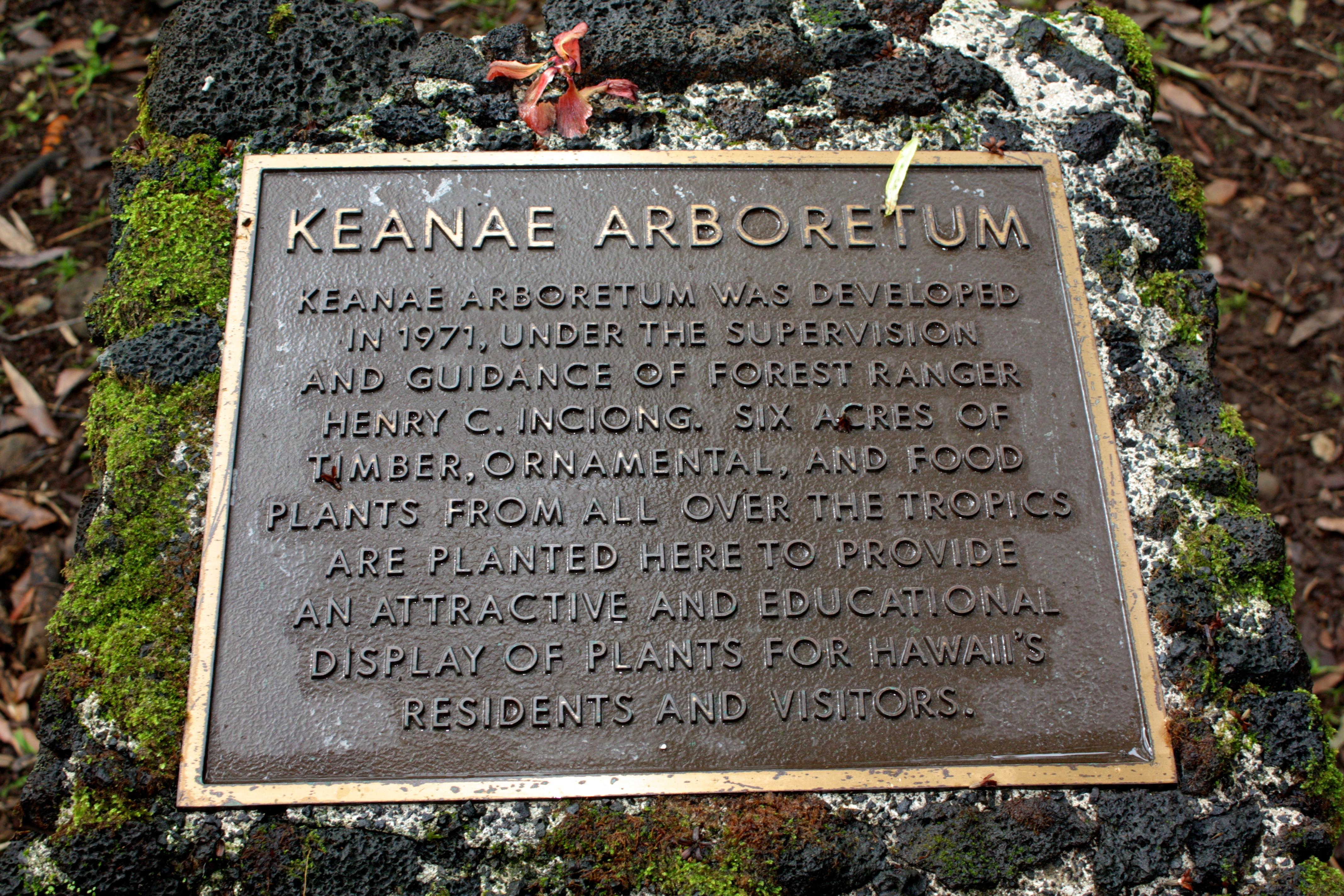 Keanae Arboretum