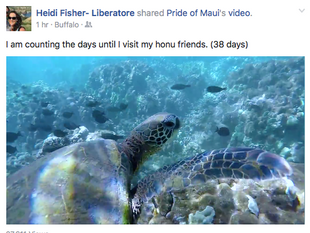 "Heidi: ""I am counting the days..."""