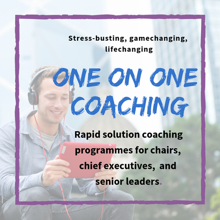 NEW CEO's Induction Coaching Package- Discounts available!