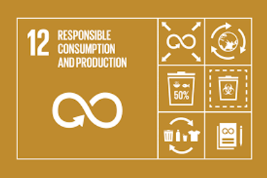 Ensuring sustainable consumption and pro