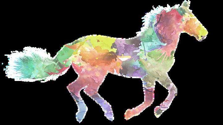 horse-3317004__340%5B1%5D%5B4038%5D_edit
