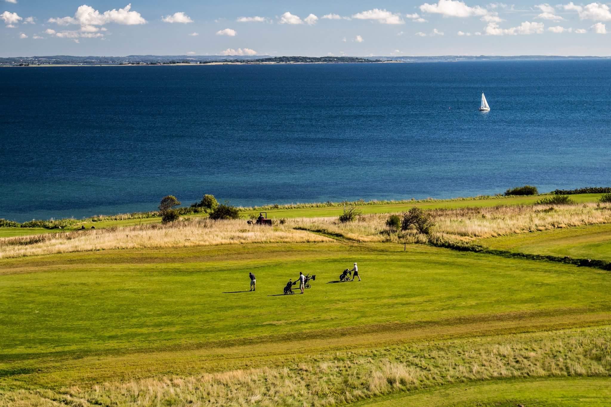 golf 12