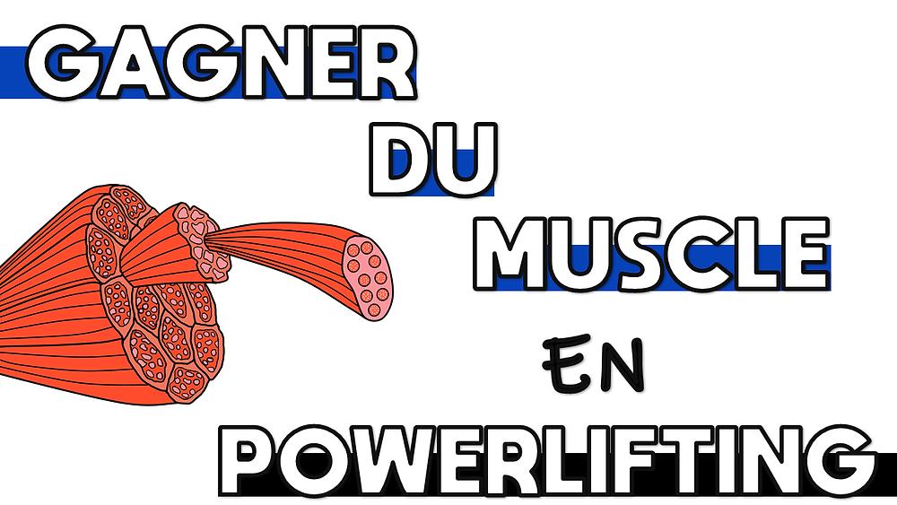Gagner du muscle en powerlifting