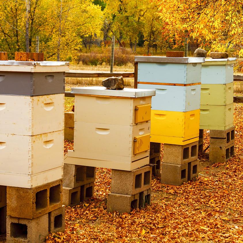Beekeeping Winterization Class