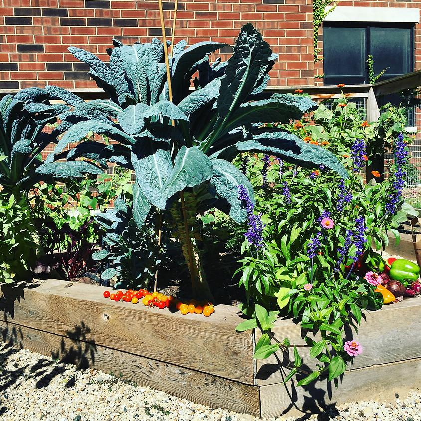 Presentation & Garden Walk: How to Improve Your Soil Organically & Grow a Nutrient-Dense Edible Garden