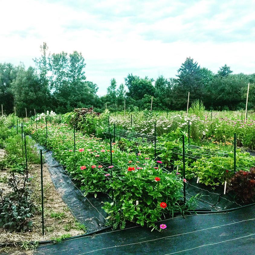 Flower Farm Tour with Heirloom Soul Florals