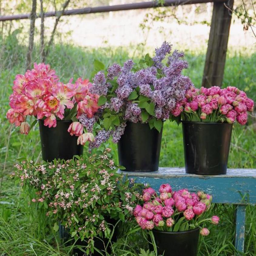 Floral Arranging Flower Bar