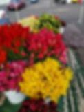 LuckyFarms_Flowers2.jpg