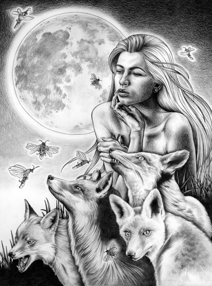 Foxes and Fireflies BW M.jpg