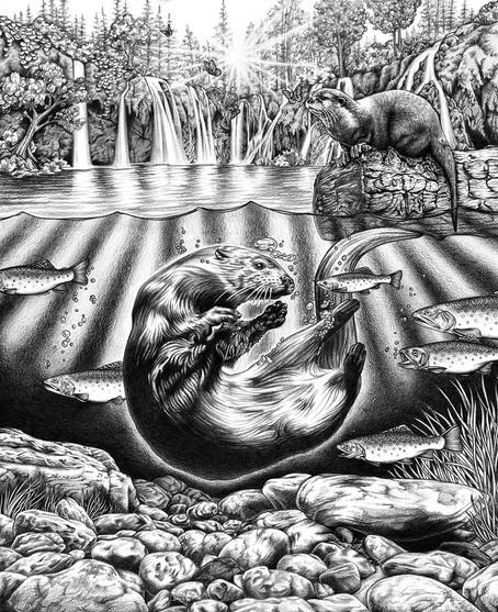 S Otters BW.jpg