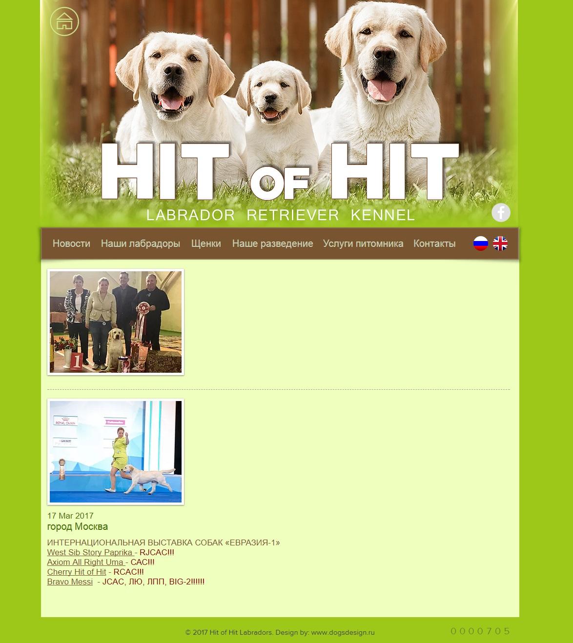 Hit of Hit
