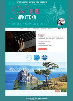 Рекламный сайт (редизайн)