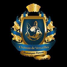 PALACE of VERSAILLES_логотип-02.png