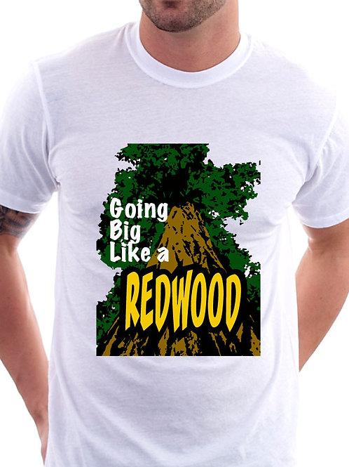 BIG like a Redwood