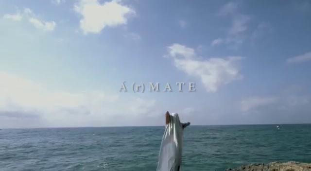 Á(r)mate