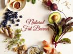 LIFESTYLE - NATURAL FAT BURNER