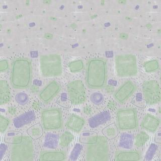Estampa barrado, inspirada nas obras de Arcanjo Ianelli.