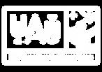 IAU100_branco_RGB.png