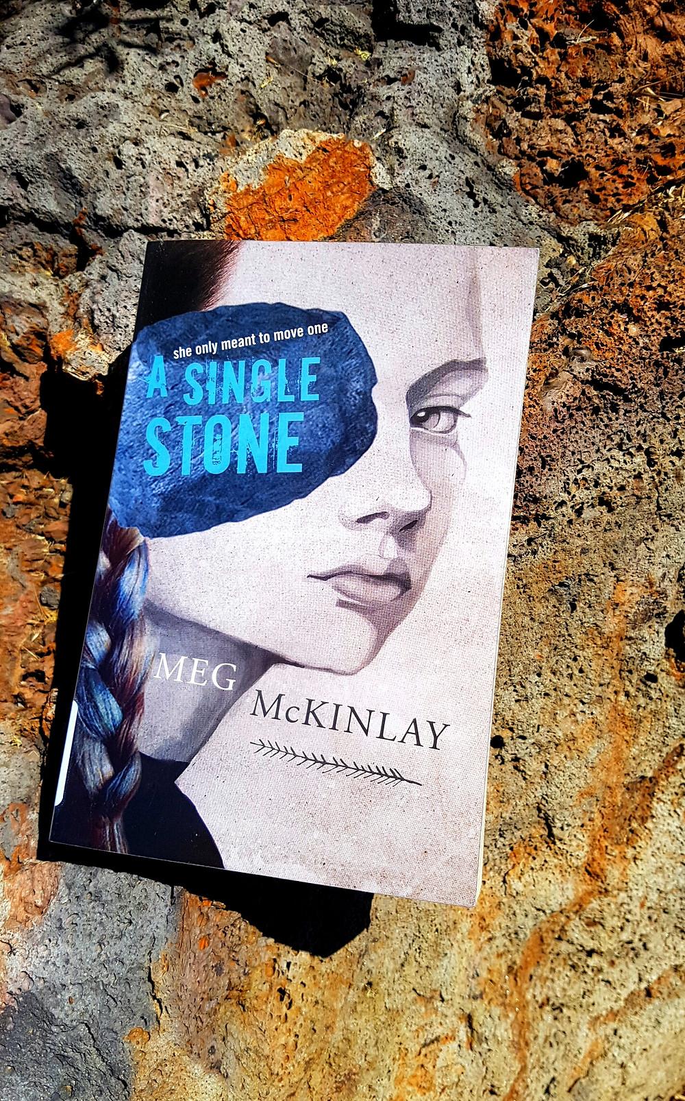 Photo of A Single Stone, Meg McKinlay