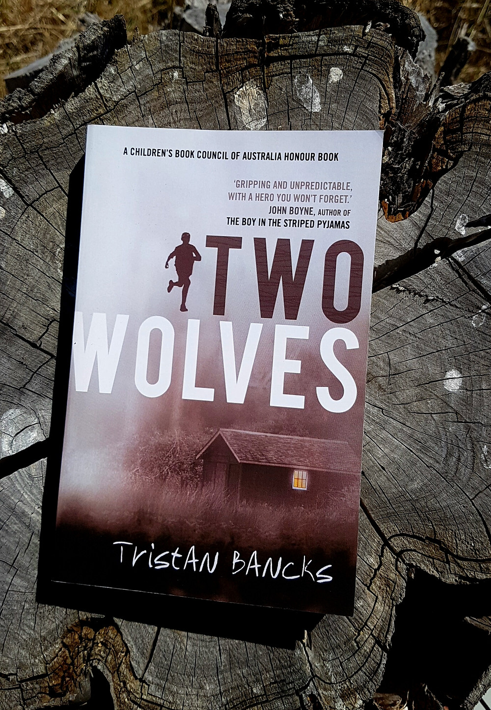 Photo of Two Wolves, Tristan Bancks.