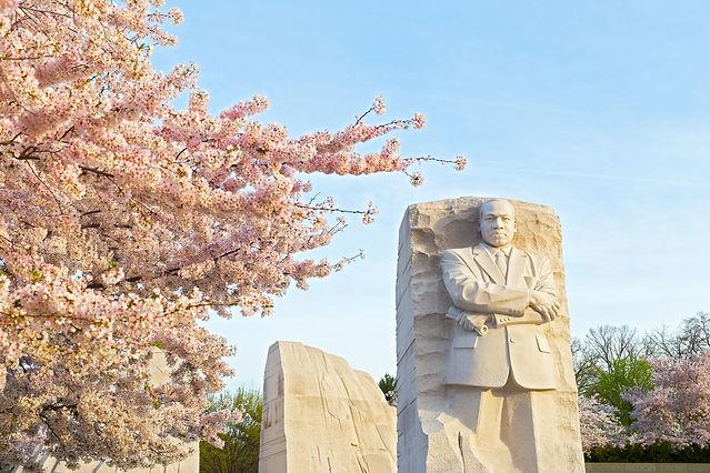 MLK Pic.jpeg