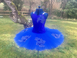 Senior Royal Blue Tutu